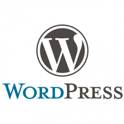 WordPress lessons